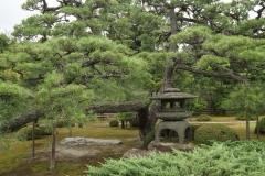 Nijō Castle 3