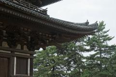 Kōfuku-ji detail