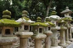 Nara lanterns 1
