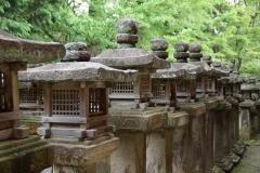 Nara lanterns 3