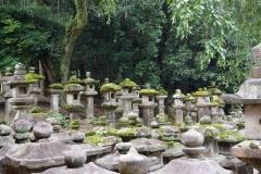 Nara lanterns 4