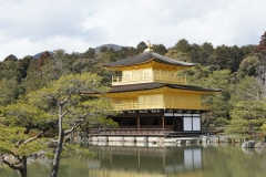 Kinkaku-ji 3