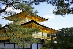 Kinkaku-ji 1