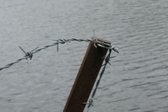 A rusting fence on the shore of Grassmere