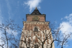Tower and Tree. Rynek Główny, Kraków