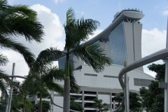 Hotel through palms